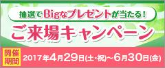 【抽選でBigなプレゼントが当たる】ご来場キャンペーン